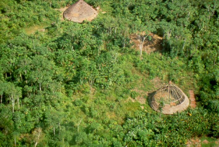 Malocas do povo Suruwahá (Foto: Gary Rodgers).