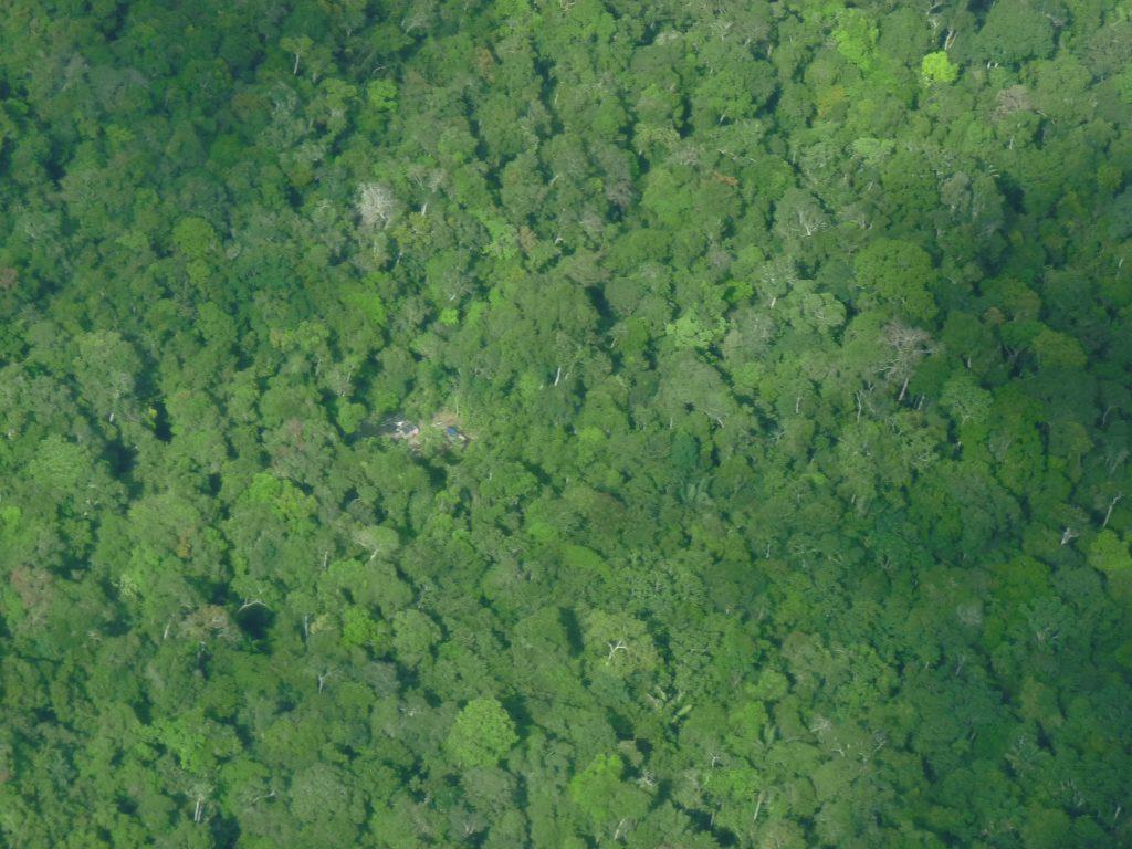 Acampamento de madeireiros no limite da Reserva Nacional Matsés (Foto: Hilton Nascimento/Acervo CTI).